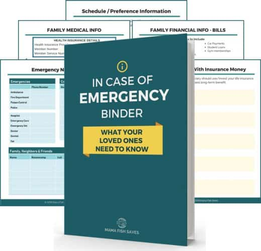 mergency documents ICE Binder