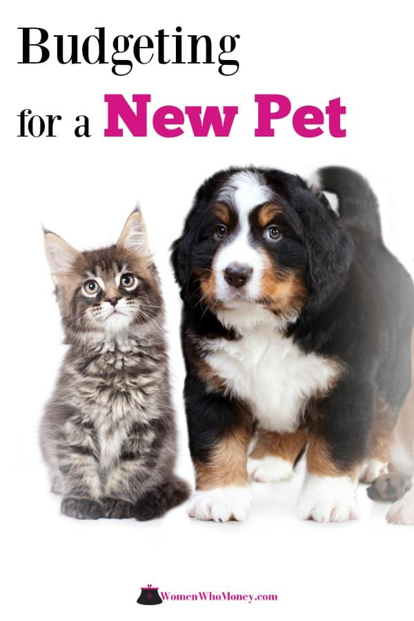 Furry friends bring so much love to your house, but just like new human babies, they also carry additional expense. Here's how to budget for a new pet. #budget #budgetingforpets #newpets