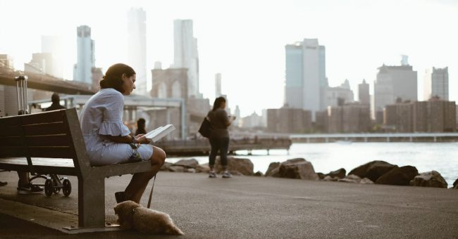 women reading a book sitting on a park bench