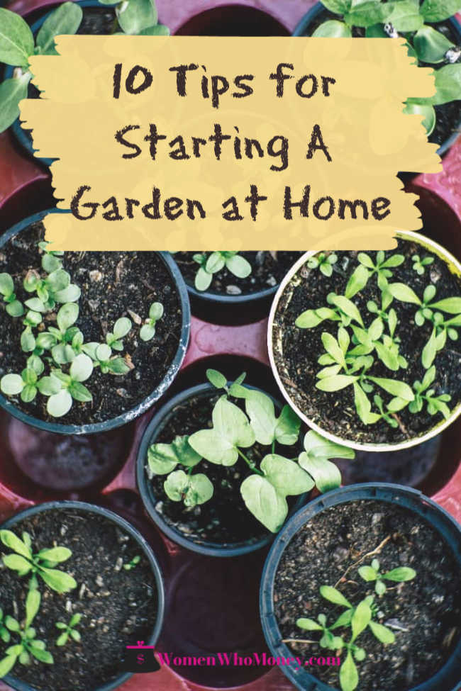 10 tips for starting your garden at home