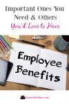 important employee benefits you need and others you'd love to have graphic