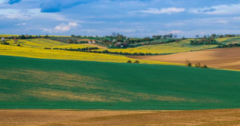 Real Estate Investing with Crowdfunded Farmland